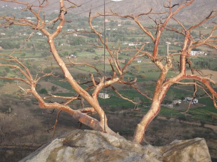 pushkar sunset hike to brahma's temple pushkar india