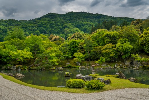 The gardens of Japan.