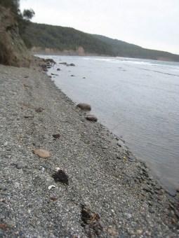 Pebbly Beach, Murramarang National Park Australia