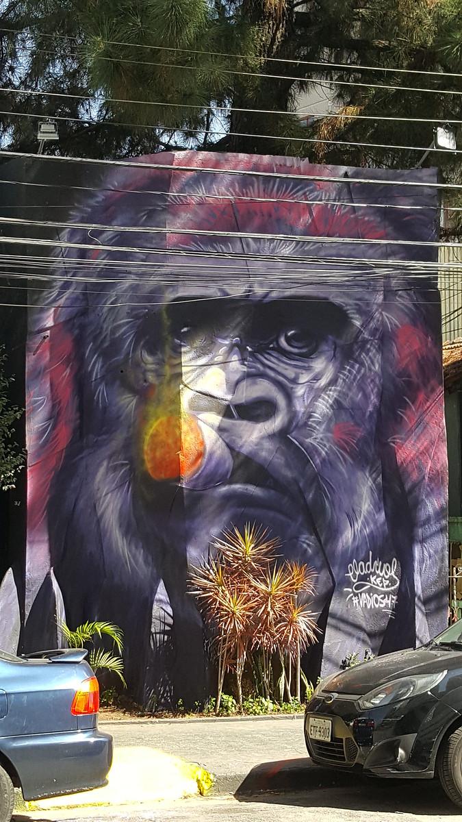 Gorilla with cigar street art