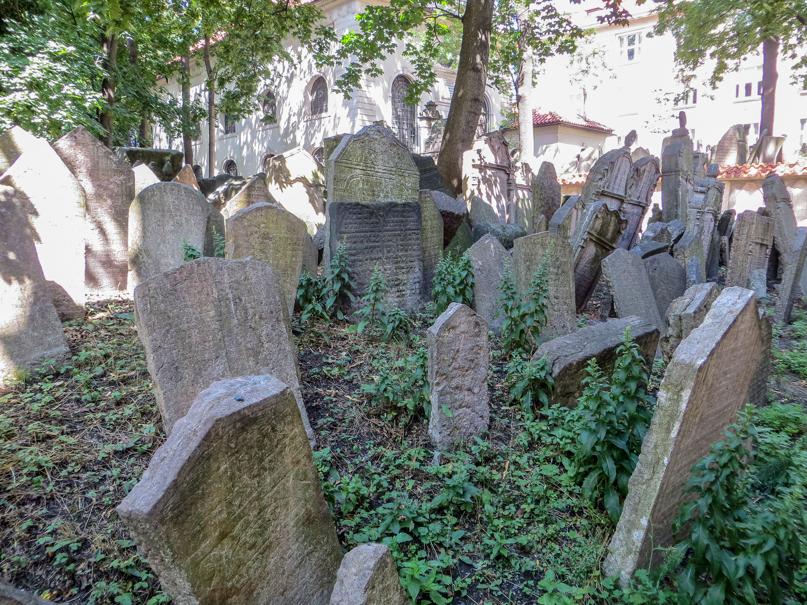 travel to prague alone and see the jewish cemetery