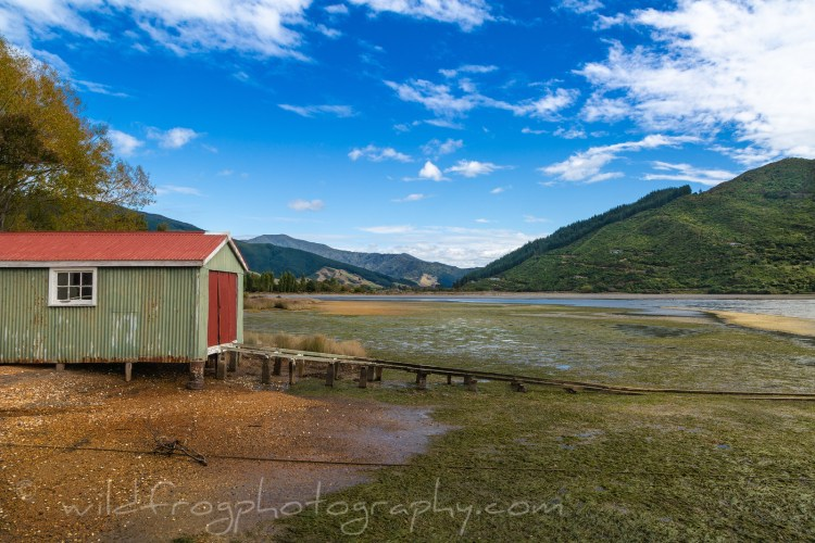 Boat shed at low tide. Queen Charlotte Sound