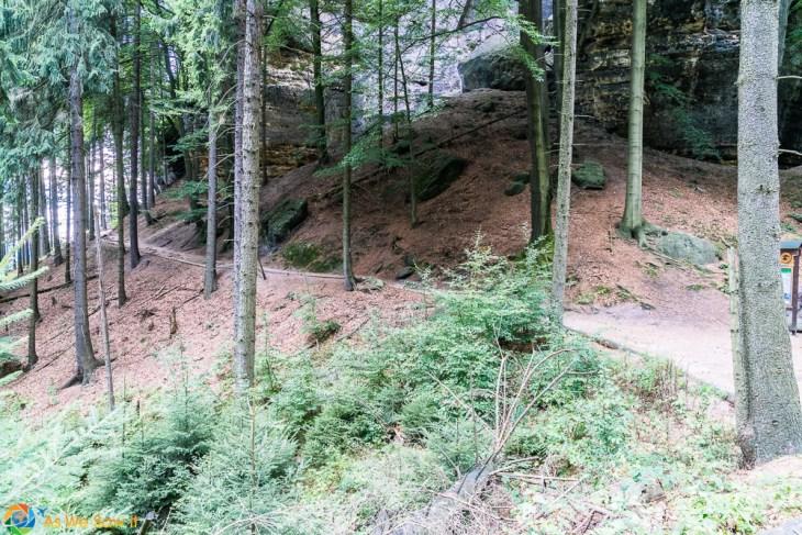 hiking path in Bohemian Switzerland