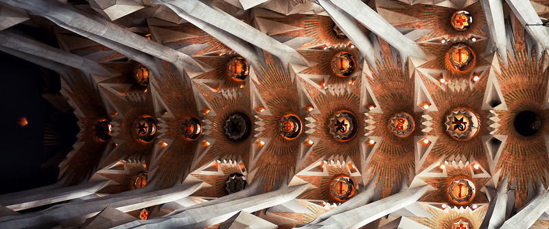 Ceiling of La Sagrada Familia.