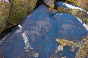 El Conejo Narrows Petroglyphs