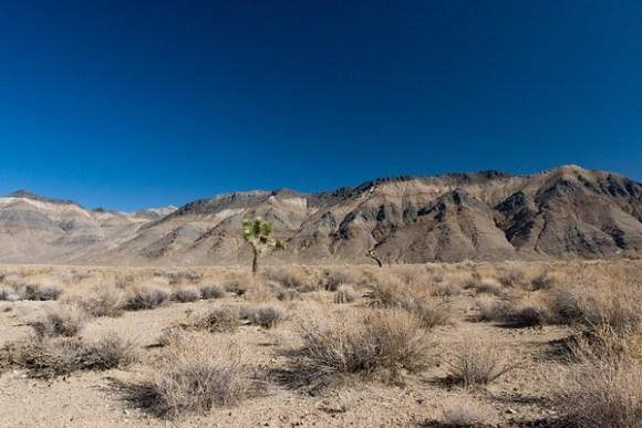 """Sandy Flat"" Pictographs"