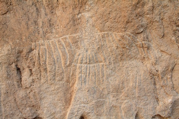 White Cliffs Petroglyphs