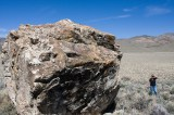 """Little Boulder Valley"" Petroglyphs"