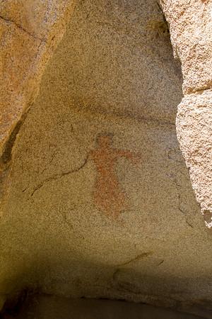 Brunette Red Lady Pictograph