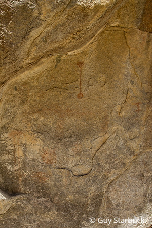 """""""Southern Eagle"""" Pictographs"""