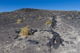 """Sand Flat"" Geoglyphs"