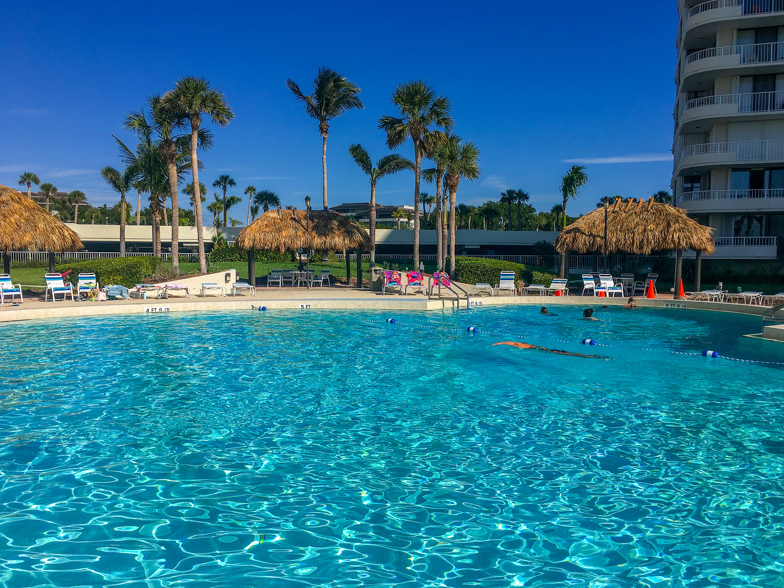 several marco island tours exist to help you on your stay. or just chill near the pool.