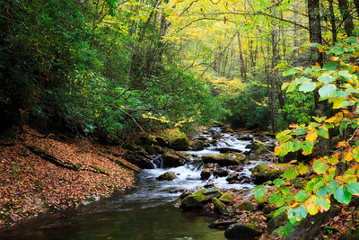Courthouse Creek in North Carolina