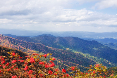 Craggy Gardens in the NC mountains