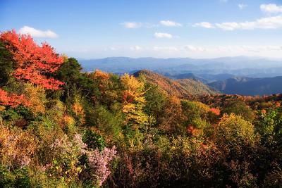 Autumn Scene from Parkway