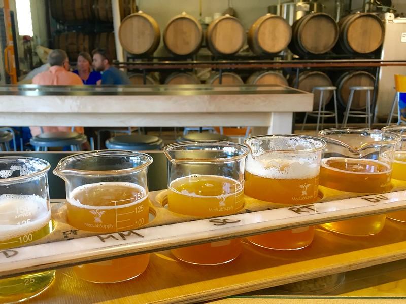 flight of beer at Cerebral Brewing in Denver