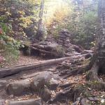 Mt. Cardigan 31