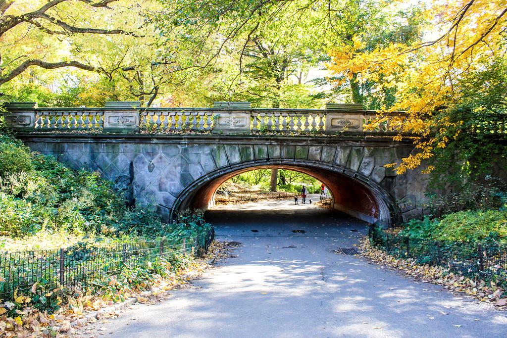 Explore the bridges on your Central Park walking tour