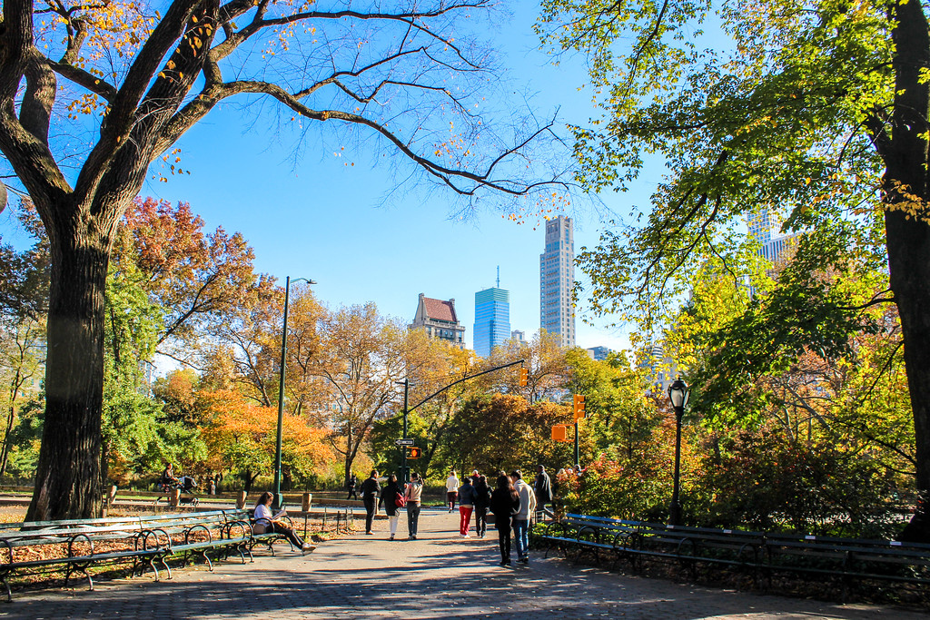 one of the many beautiful views you will see on your central park walking tour