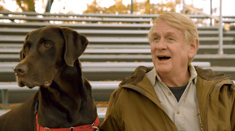it's a dog's life with bill farmer disney plus (1)