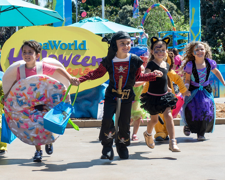 'SeaWorld's HalloweenSpooktacular' returns with Waterfront Fall Festival plus Pumpkin Hunt, and more!