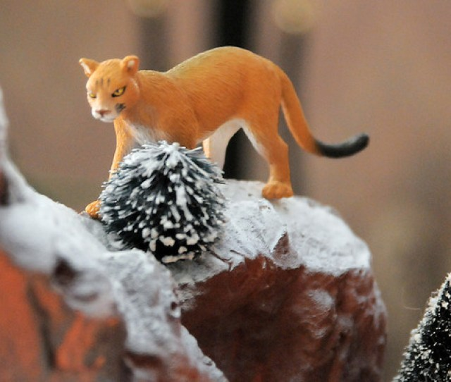 A Mountain Lion On A Mountain In Carol And Marty Clevers Christmas Village Containing  Buildings