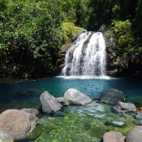 Blue and John Crow Mountains: Jamaica's First UNESCO World Heritage Site; Everything Everywhere