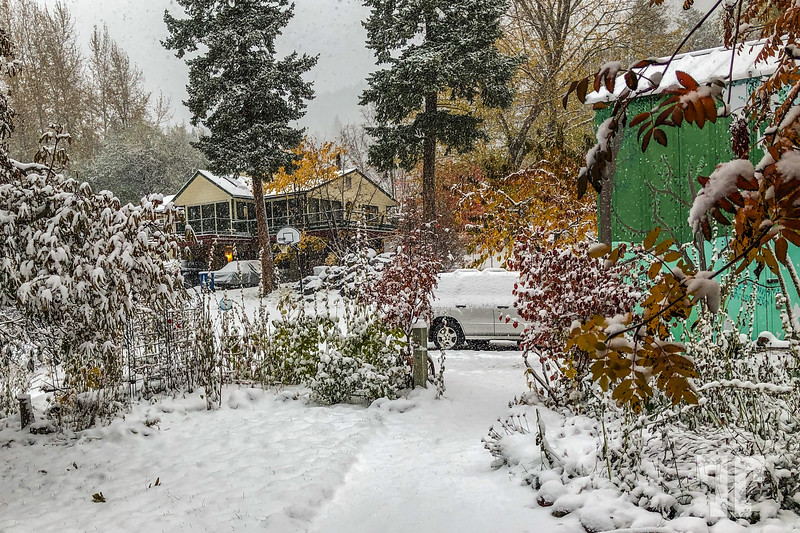 Front yard and car covered by snow at the end of October in the Bigfork, Montana area