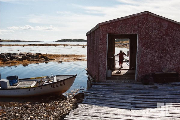 Old fisherman shed in Fogo Island, Newfoundland