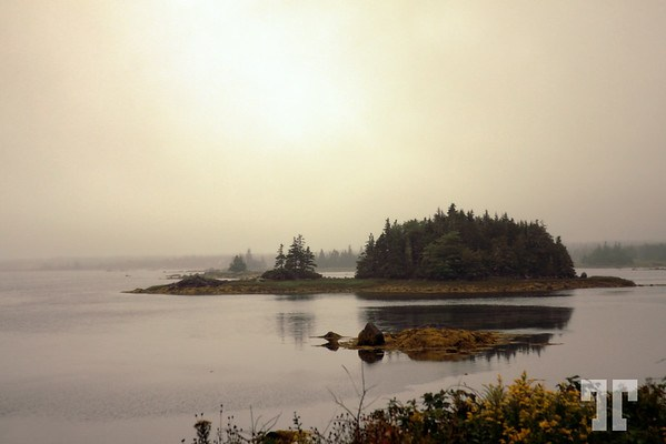 Fog ove the water in the South West Nova Scotia