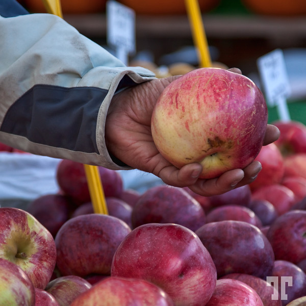 Red Apples at the Byward Market in Ottawa, Canada by Tatiana Travelways