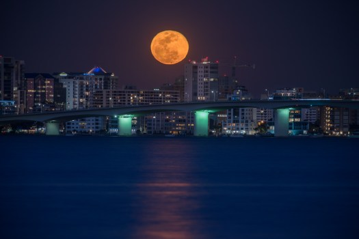 Super Blue Blood Moon over Sarasota