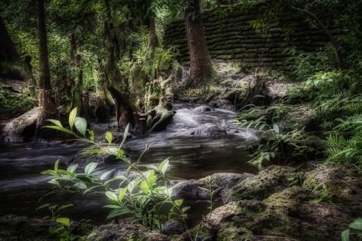 Faerie River