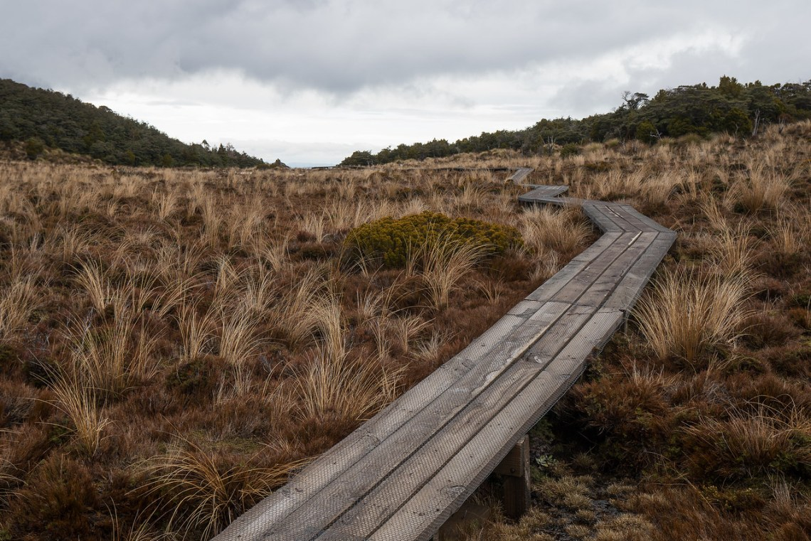 Boardwalk across wetlands on Waitonga Falls Track on Mt Ruapehu.