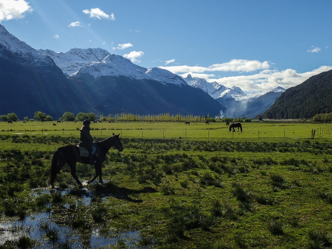 Horseback riding along the Dart River