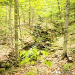 Rattlesnake Mountain 3
