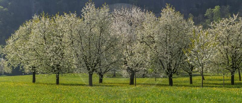 arth panorama landscape photography