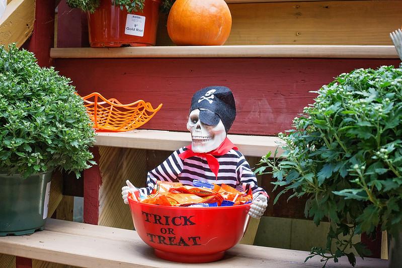 halloween steals
