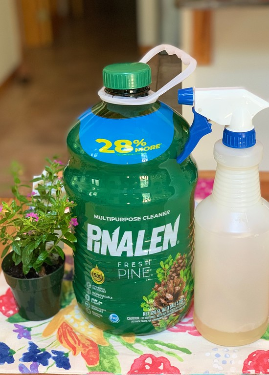 #ad How to Give Your Home a Great-Smelling Summer Refresh with these easy tips #pinalen #clean #house #patio #kitchen #bathroom #scentofsummer