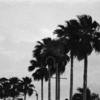 22 Freeport, The Bahamas in Black and White