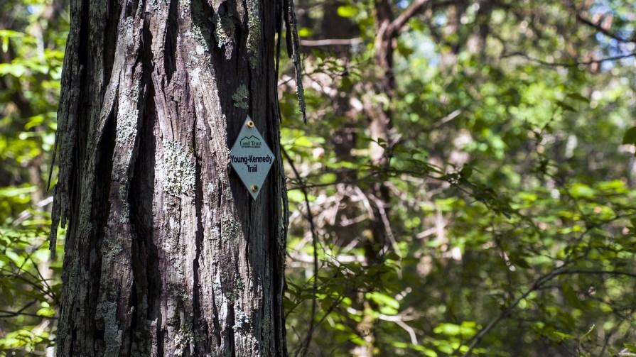 Huntsville-Hiking-Title Huntsville Hiking: Land Trust of North Alabama Three Caves