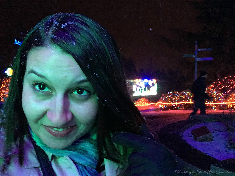 Real Snow in my Hair at the Point Defiance Zoo in Tacoma, Washington