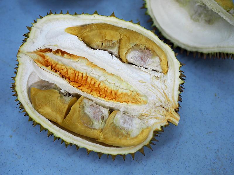 kaki buloh durian