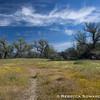 Shell Creek Road