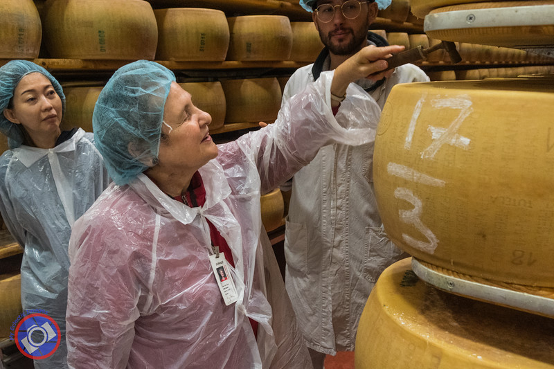 Testing the Quality of a Wheel of Parmigiano Reggiano (©simon@myeclecticimages.com)