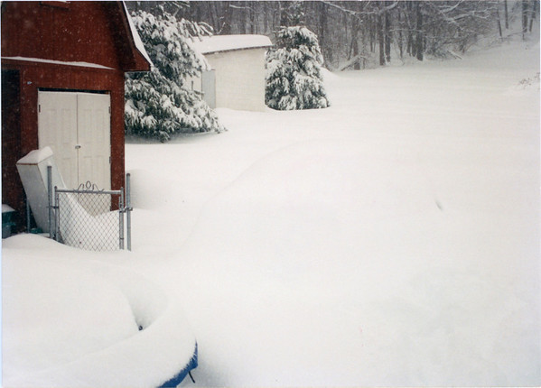 Great Snow of '94 #1