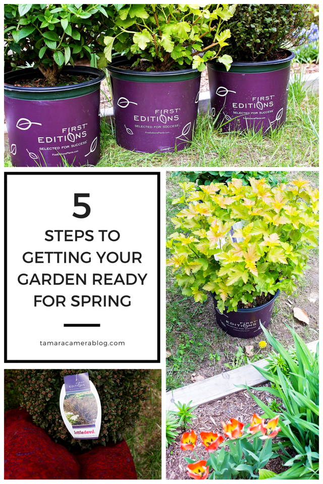 How do you get your garden ready for spring, or even start a garden at all? Don't worry - we're the garden experts here! Here are my 5 steps to getting that garden ready this year. #ad
