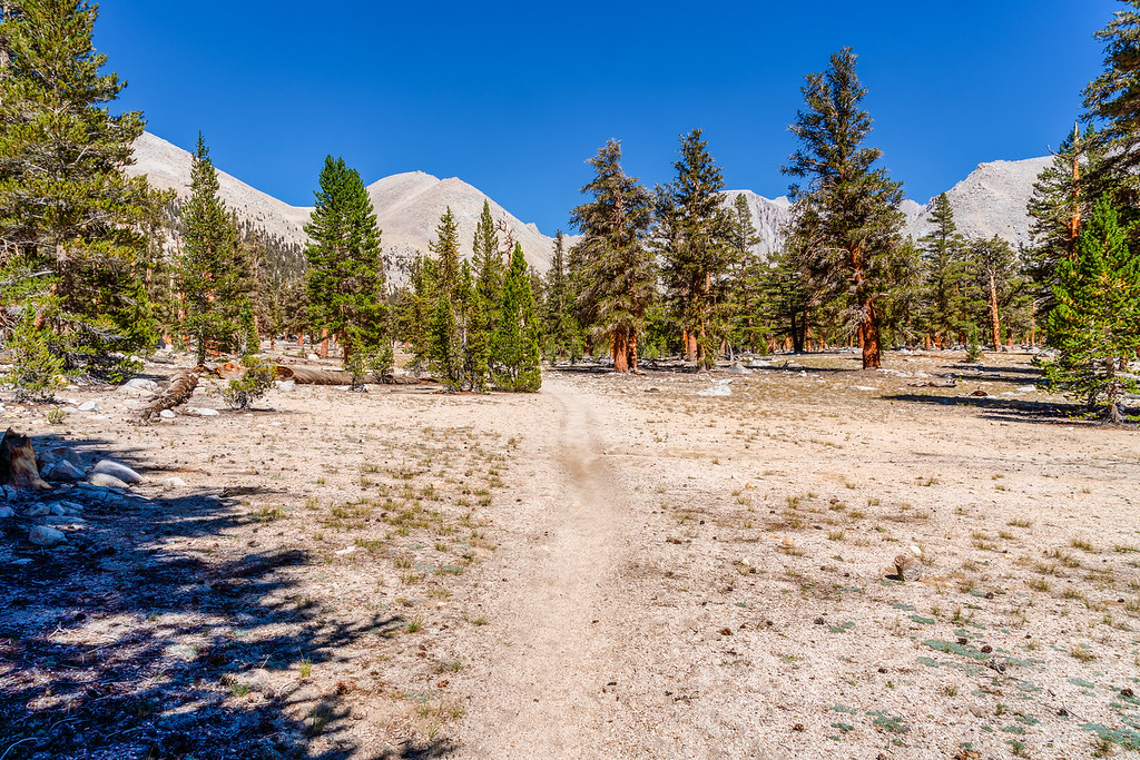 Junction Meadow to Crabtree High Sierra Trail Sequoia National Park