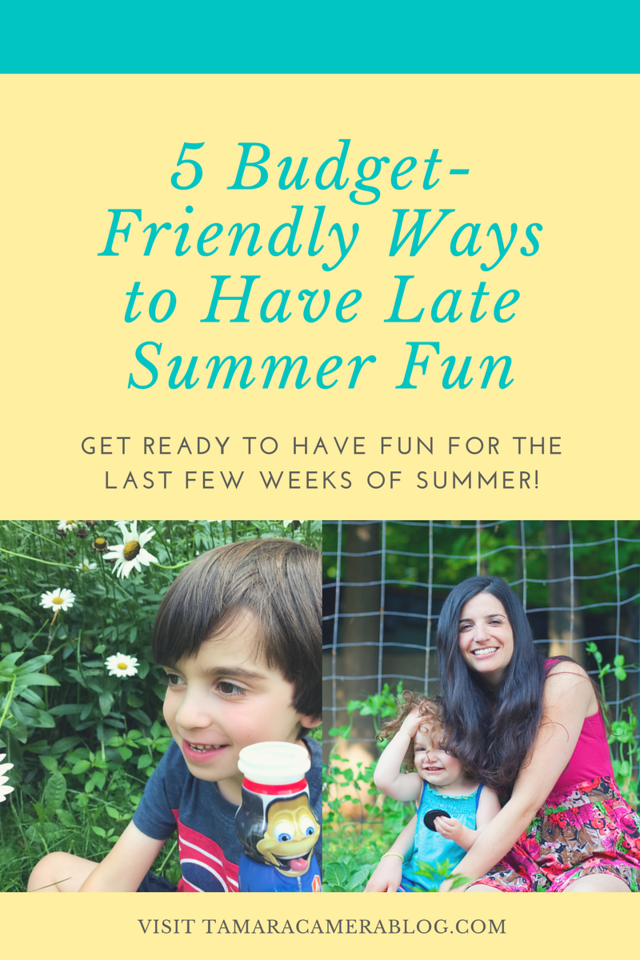 Summer isn't over until it's over. And that is not now! Here are our favorite budget-friendly ways to make the best of late summer. #DanimalsDoesSummer #AD