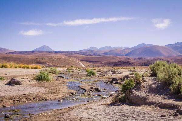 6 Mile Trek through the Los Cardones Ravine in the Atacama Desert of Chile. | www.eatworktravel.com